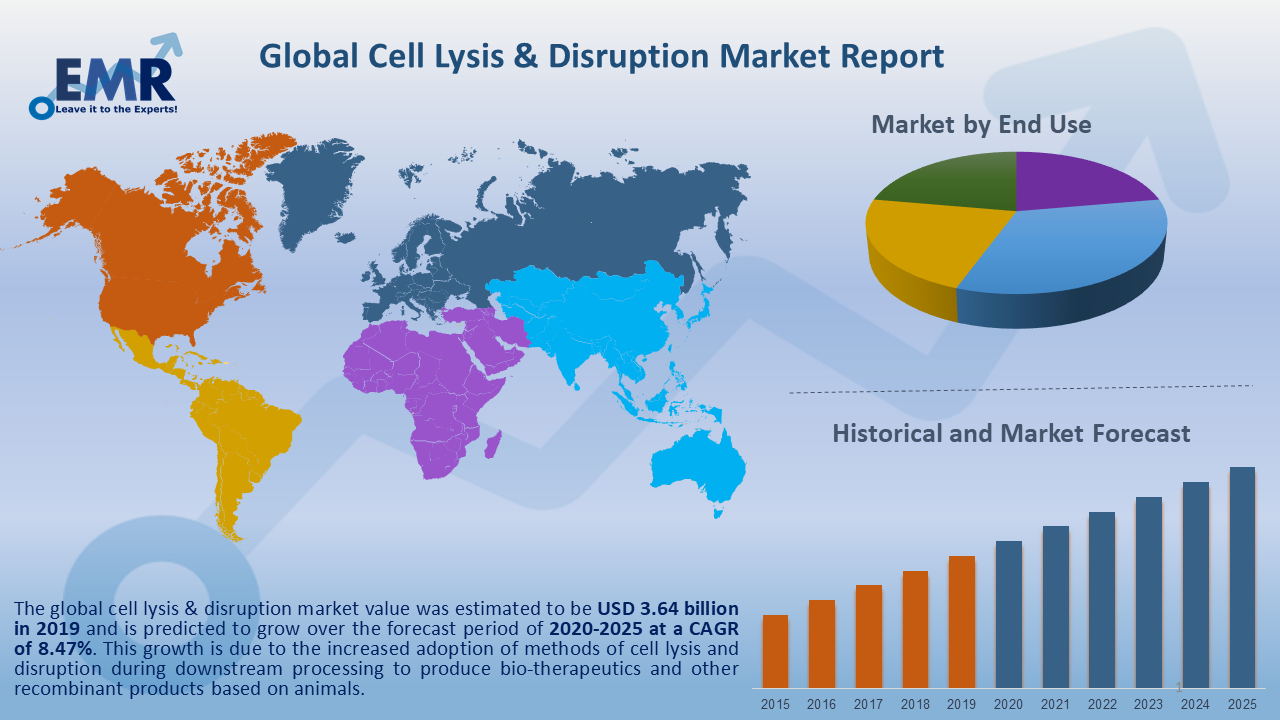 Global Cell Lysis & Disruptions Market Report and Forecast 2020-2025