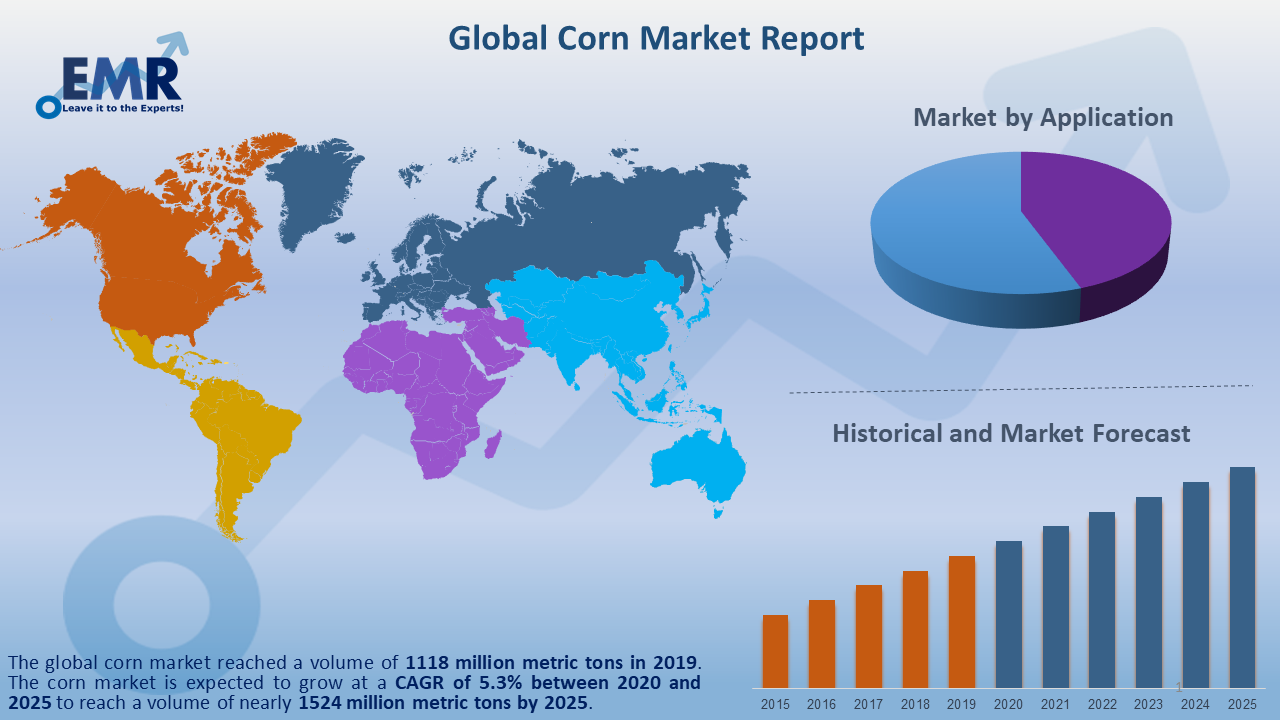 Global Corn Market Report and Forecast 2021-2026