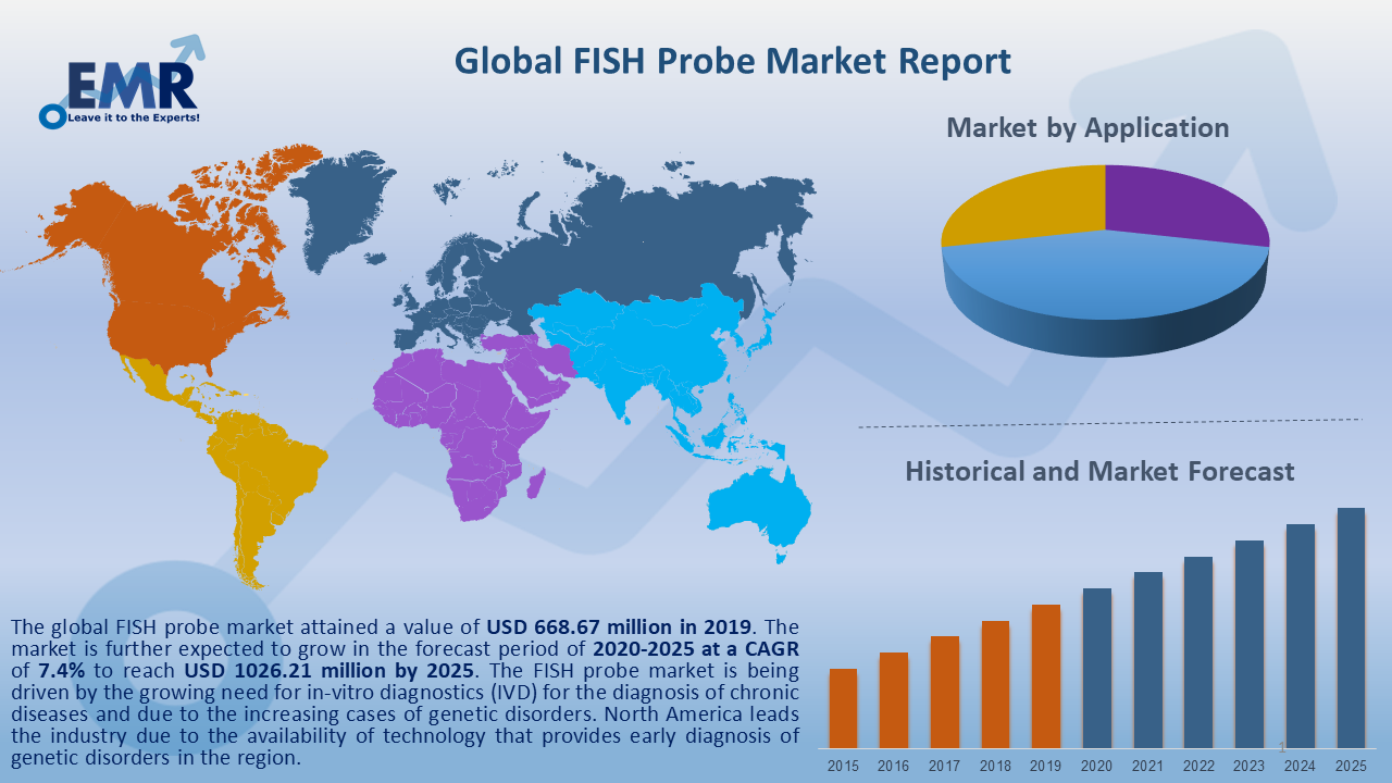 Global FISH Probe Market Report and Forecast 2020-2025