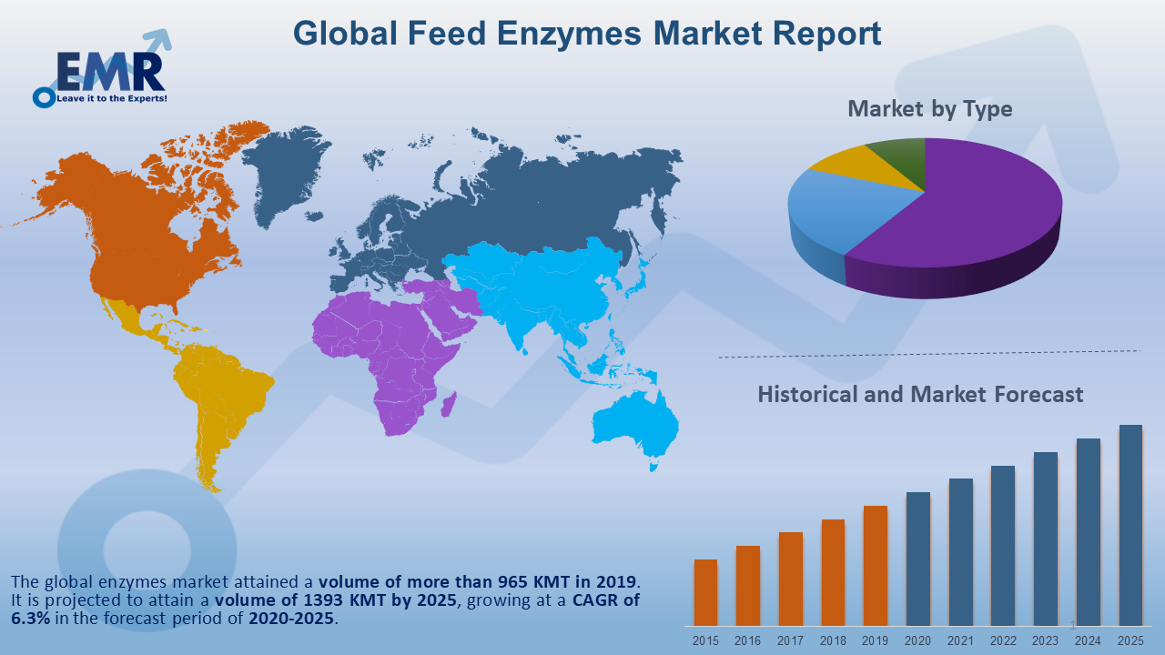 Global Feed Enzymes Market Report and Forecast 2020-2025