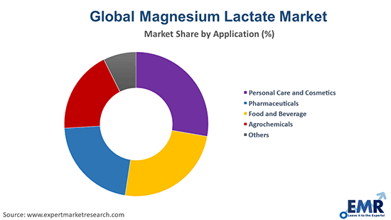 Magnesium Lactate Market by Application