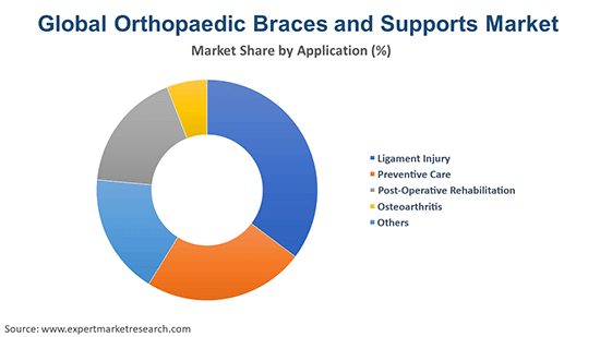 Global Orthopaedic Braces and Supports By Application