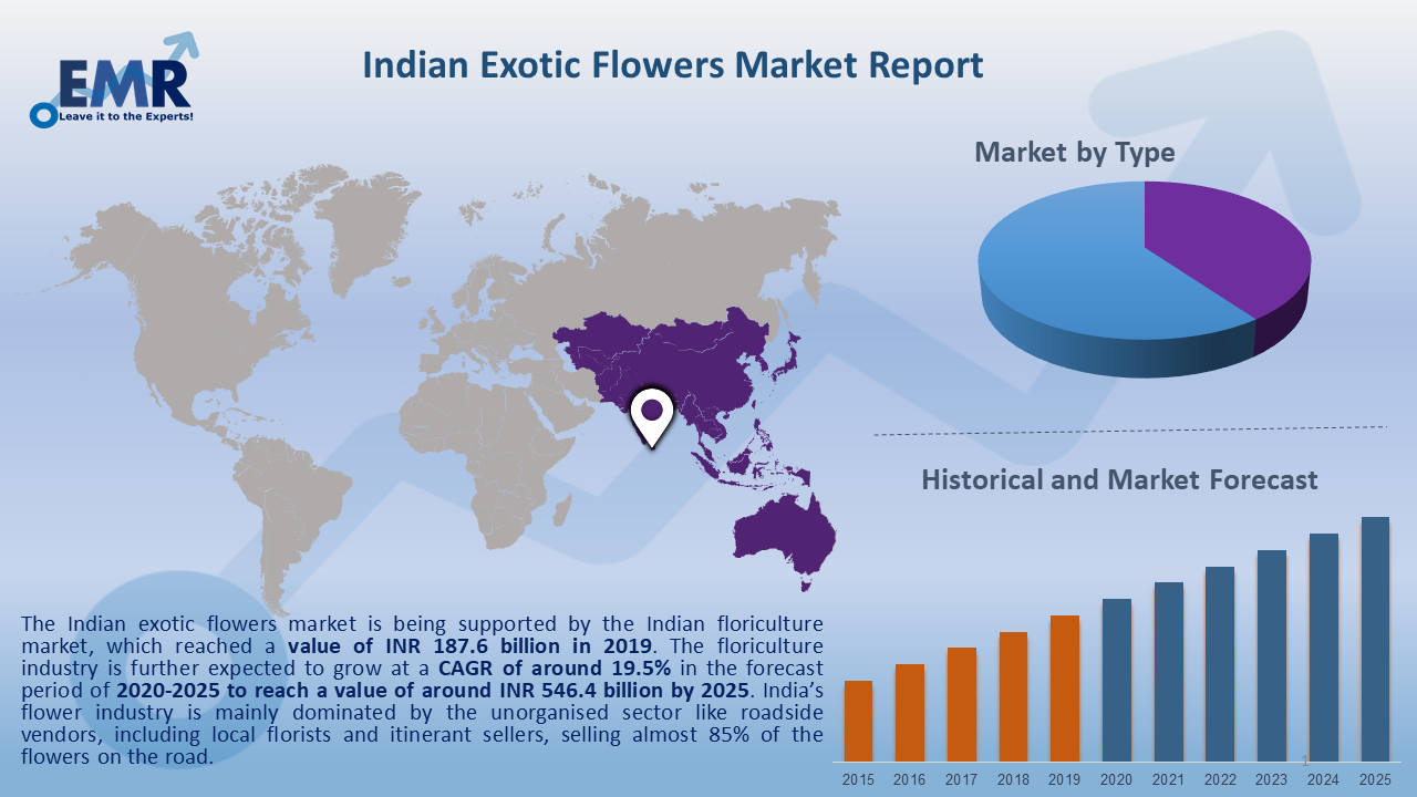 Indian Exotic Flowers Market Report and Forecast 2020-2025