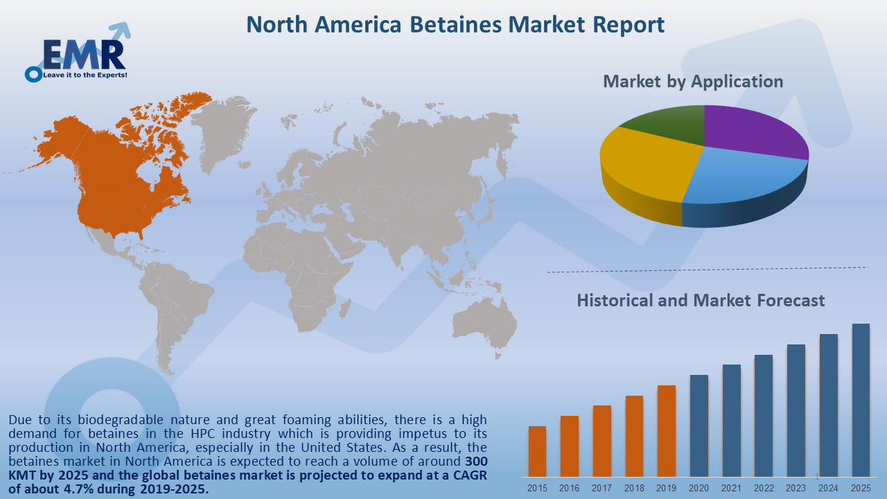 North America Betaines Market Report and Forecast 2020-2025