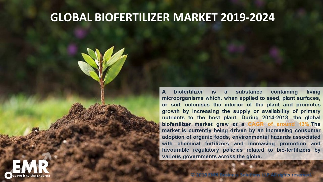 Biofertilizer Market Report and Forecast 2019-2024