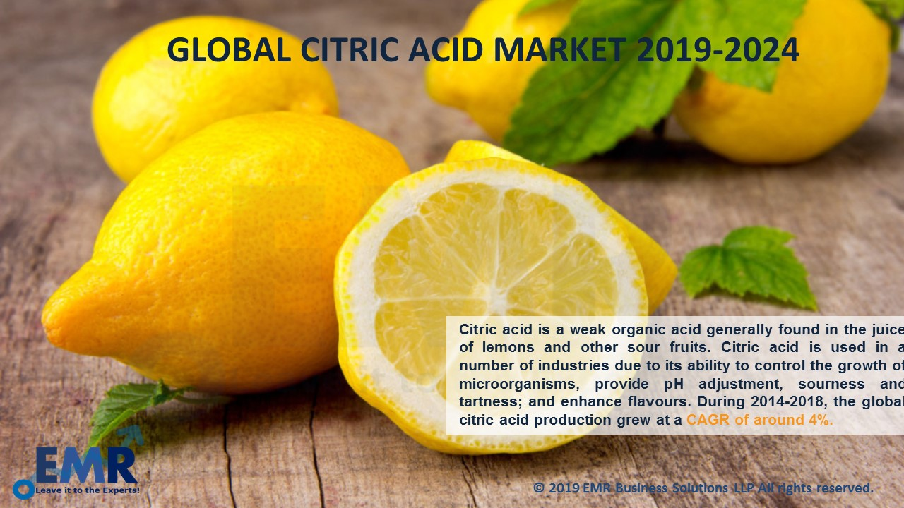 Citric Acid Market Report and Forecast 2019-2024