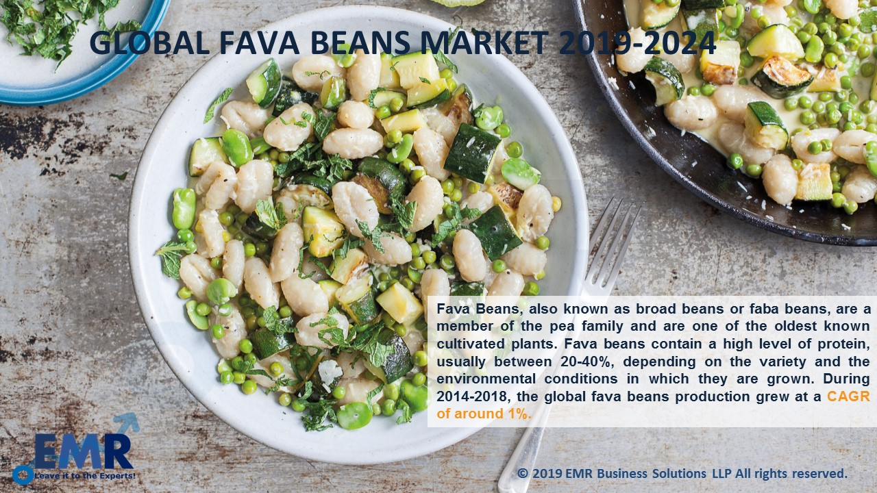 Fava Beans Market Report and Forecast 2019-2024