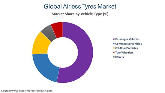 Global Antisense and RNAi Therapeutics Market Vehicle Type