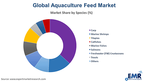 Aquaculture Feed Market by Species