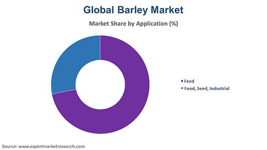 Global Barley Market By Application