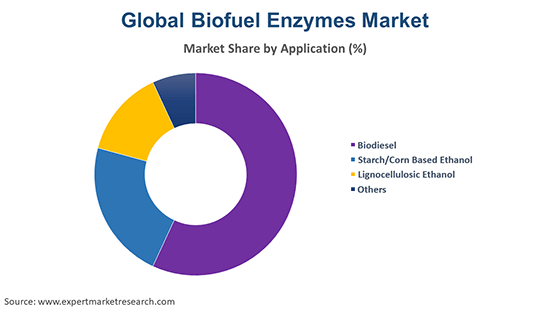 Global Biofuel Enzymes Market By Application