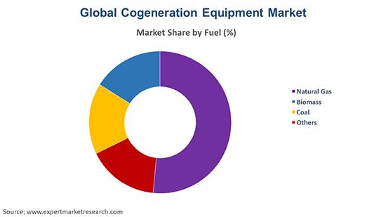Global Cogeneration Equipment Market By Fuel