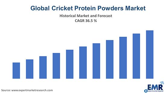 Global Cricket Protein Powders Market