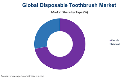 Global Disposable Toothbrush Market By Type