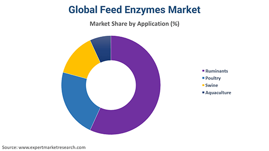 Global Feed Enzymes Market By Application