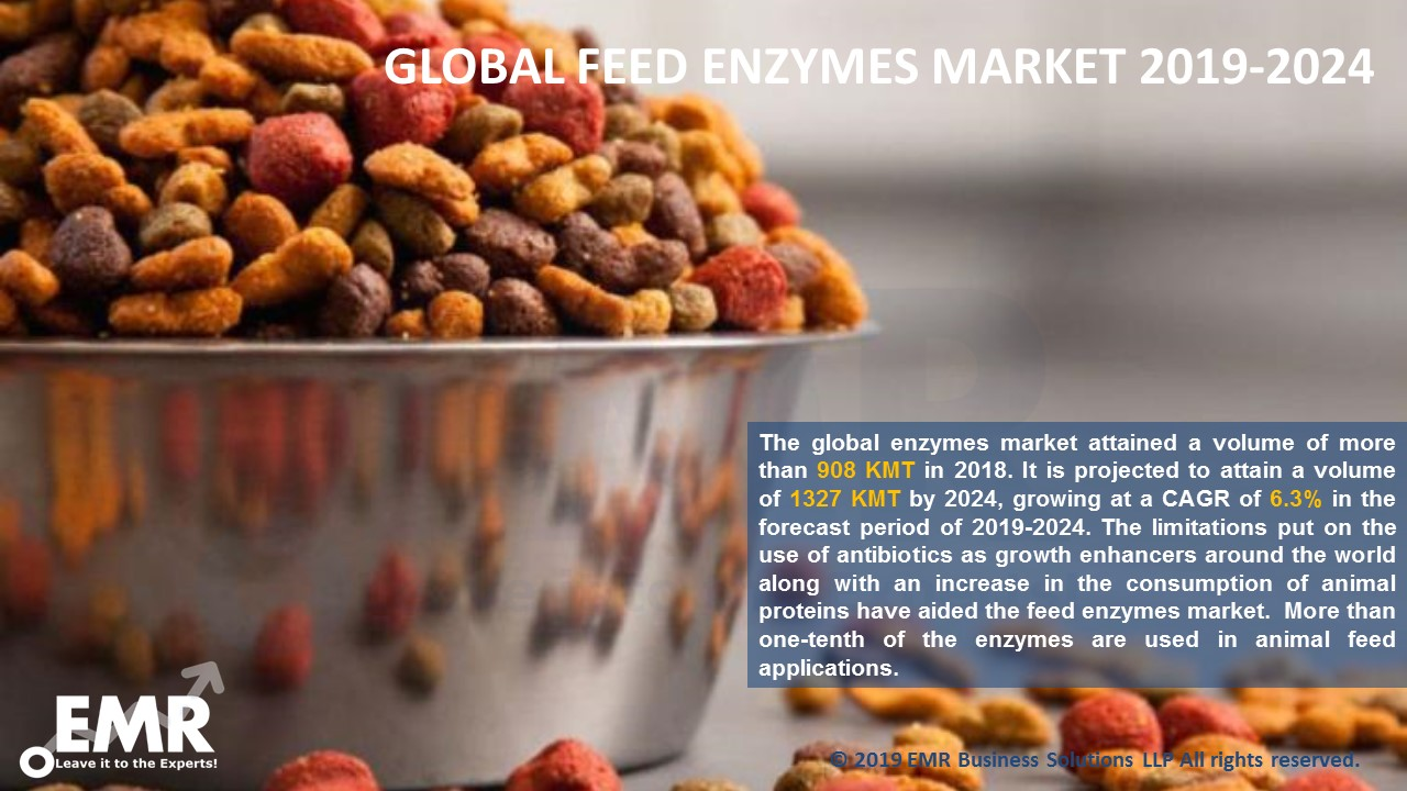 Global Feed Enzymes Market Report and Forecast 2019-2024