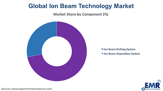 Ion Beam Technology Market by Component
