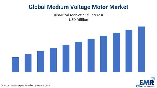 Global Medium Voltage Motors Market