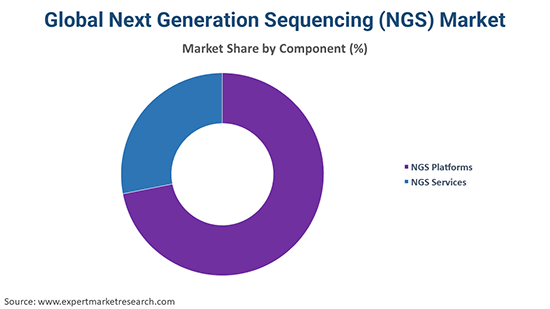 Global Next Generation Sequencing (NGS) Market By Component