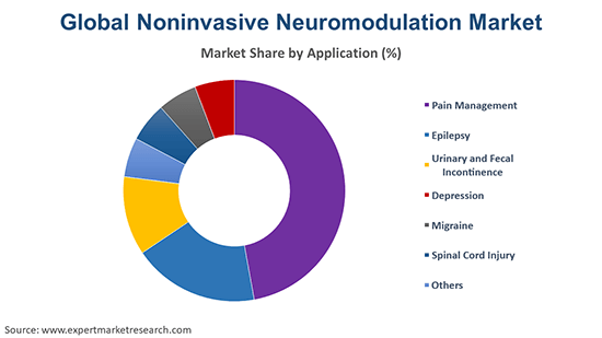 Global Noninvasive Neuromodulation Market By Application