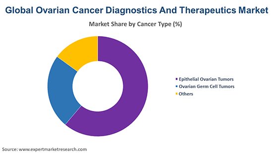 Global Ovarian Cancer Diagnostics and Therapeutics Market By Cancer Type