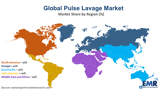 Global Pulse Lavage Market By Region