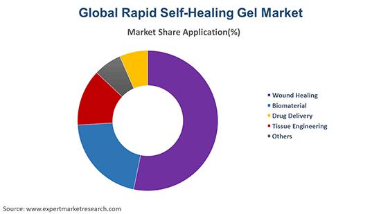 Global Rapid Self-Healing Gel Market By Application
