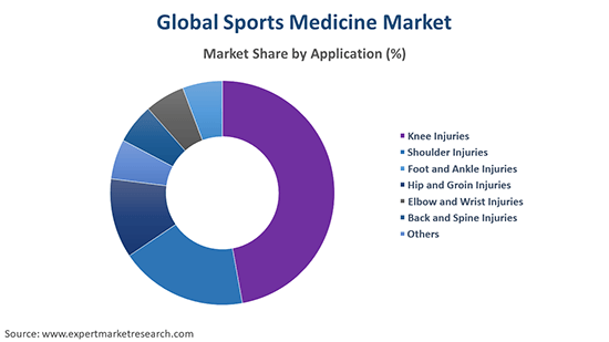 Global Sports Medicine Market By Application