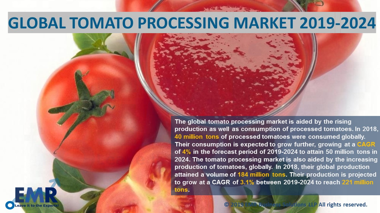 Global Tomato Processing Market Report | Expert Market Research EMR