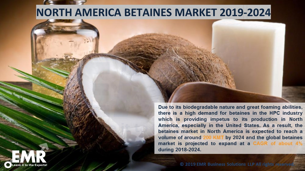 North America Betaines Market Report and Forecast 2019-2024