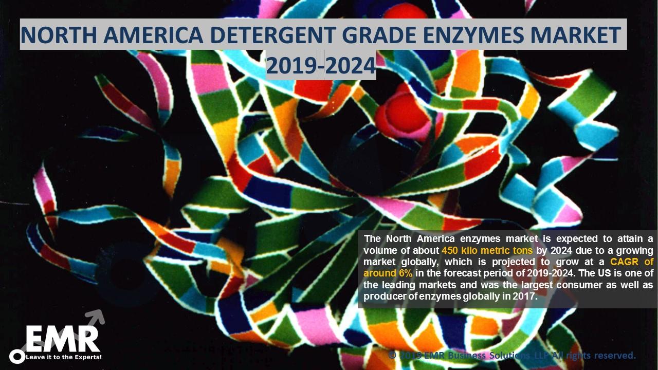 North America Detergent Grade Enzymes Market Report & Forecast 2019-2024