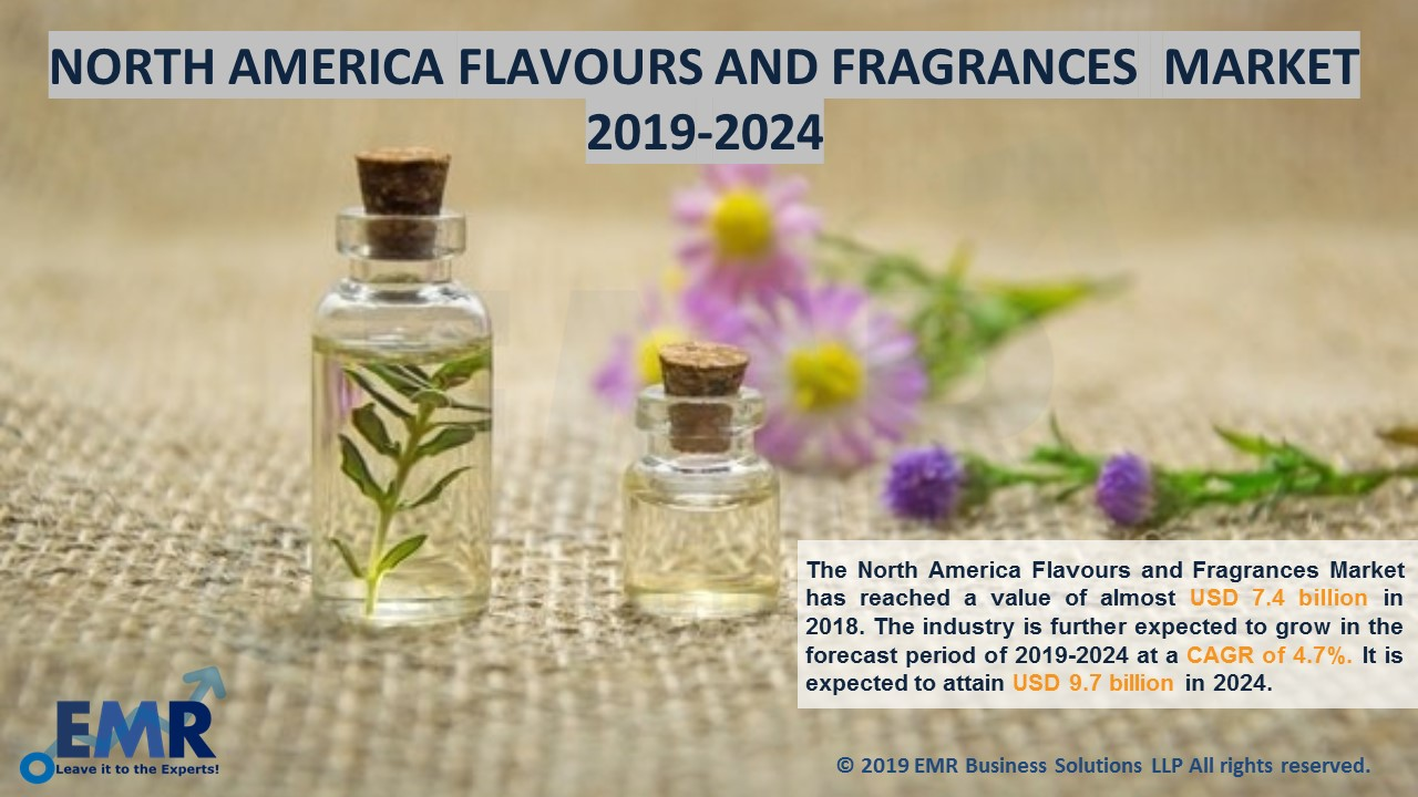 North America Flavour and Fragrance Market Report and Forecast 2019-2024
