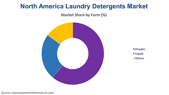 North America Laundry Detergents Market By Form