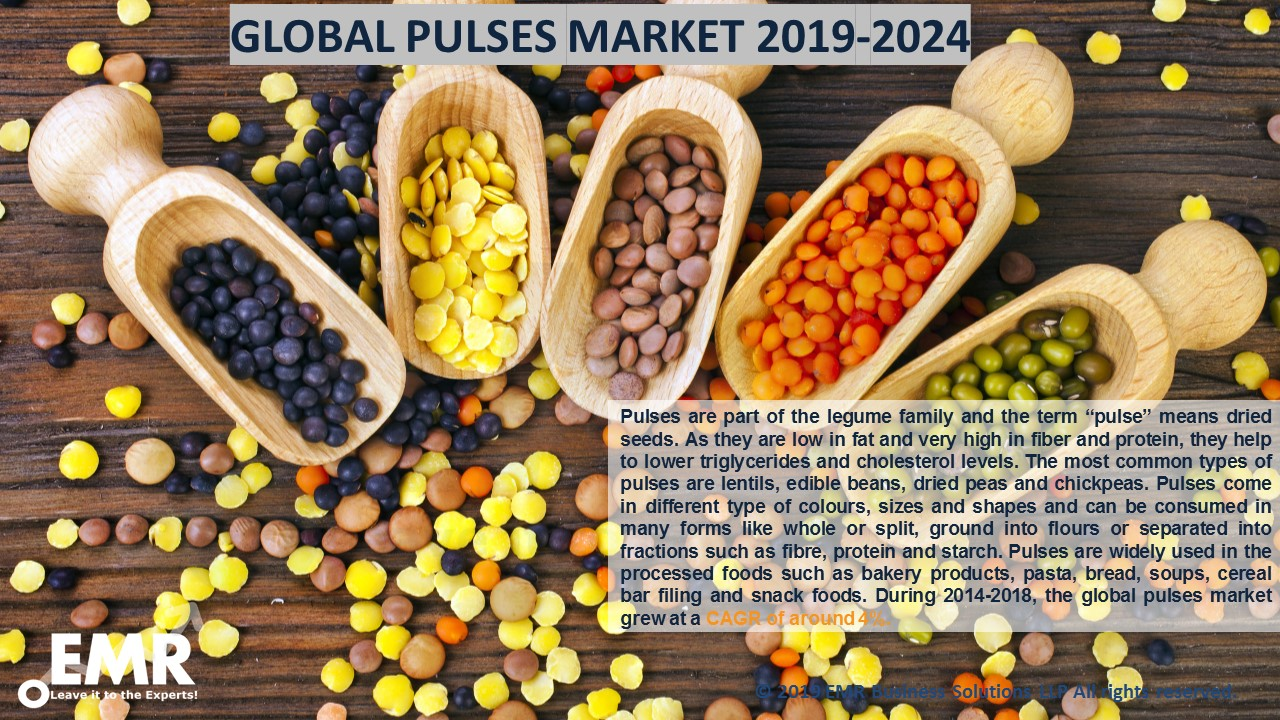 Pulses Market Report & Forecast 2019-2024